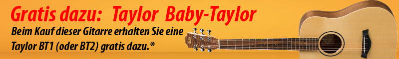 Taylor_Banner_Product1